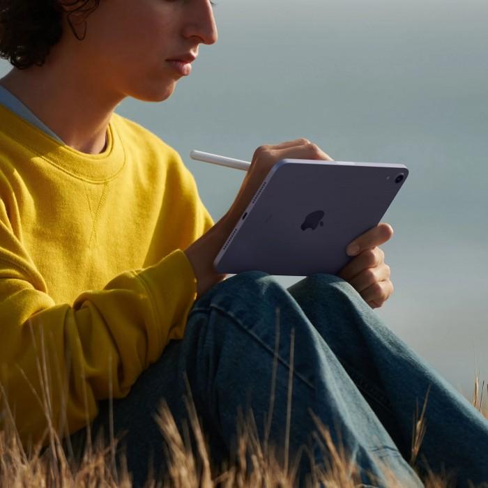 iPad mini (2021) Wi-Fi + Cellular 64 ГБ Розовый