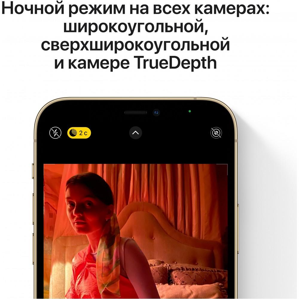 iPhone 12 Pro Max 256 ГБ серебристый
