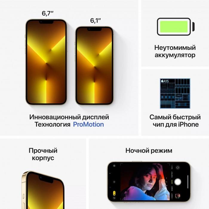 iPhone 13 Pro Max (Dual SIM) 256 ГБ золотой